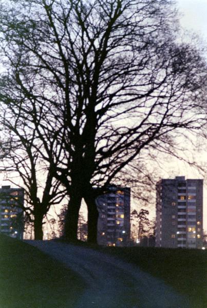 Solb_1994 3_65.jpg