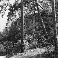 Solb_1978 46_186.jpg